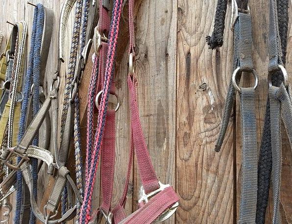 Bridle Halter Stand Horse Mount Stall Saddle Burde