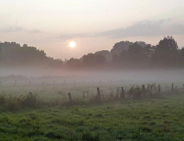 Autumn Morning Mist Back Light Taillight Fog Graze