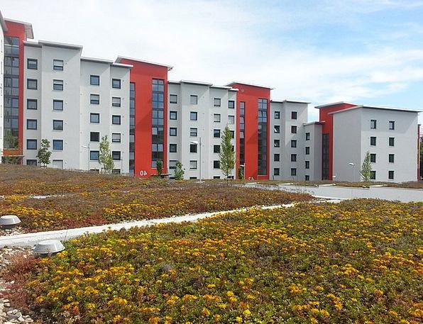 Rehabilitation Reintegration Buildings Extension A