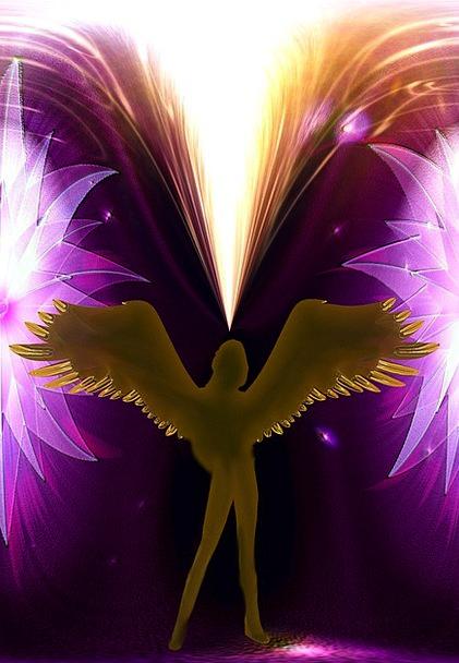 Angel Seraph Envoy Wing Annex Messenger Fantasy Im