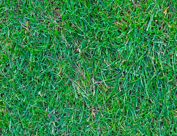 Rush Haste Lawn Green Lime Grass Artificial Turf G