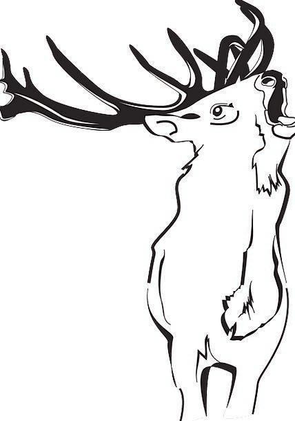 Deer Landscapes Woodland Nature Loud Lurid Forest