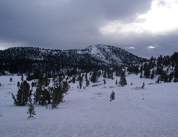 Snow Snowflake Landscapes Crag Nature Trees Plants