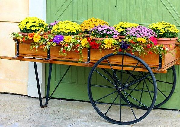 Flower Cart Traffic Carriage Transportation Mums M