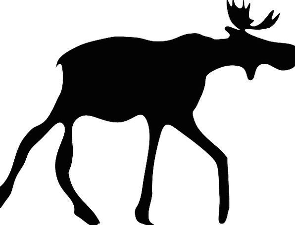 Elk Outline Walking Silhouette Animal Physical Tat