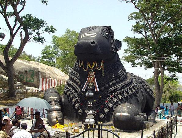 Nandi Buildings Decree Architecture Mysore Bull Me