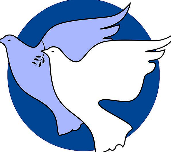 Dove Pacifist Concord Unity Agreement Peace Freedom Liberty
