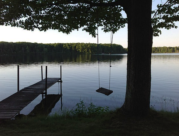 Swing Swipe Landscapes Freshwater Nature Nature Co
