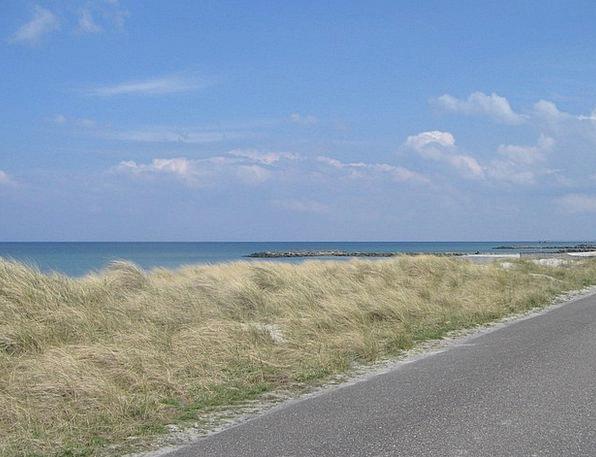 Baltic Sea Vacation Bank Travel Beach Seashore Dun