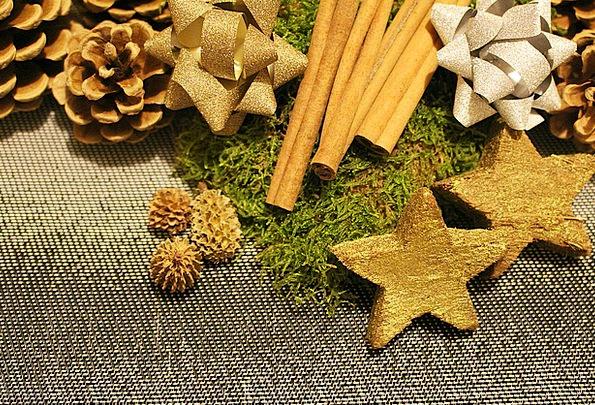 Christmas Decorations Christmas Poinsettia
