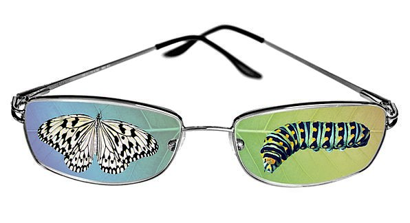 Butterfly Worm Eyeglasses Spectacles Caterpillar C