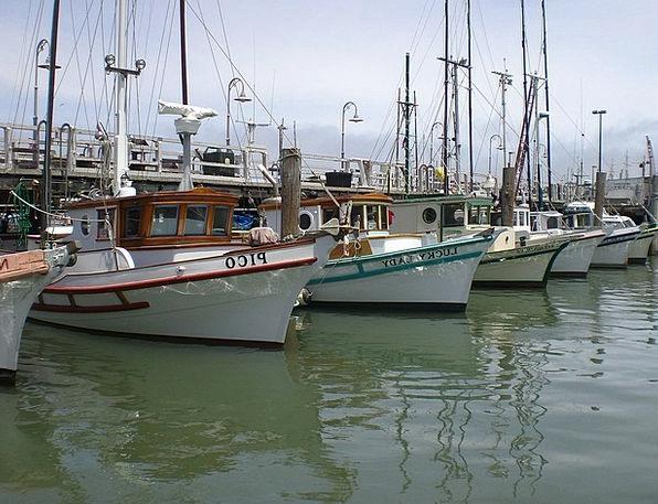 Fishing Boats Vacation Travel Ocean Marine San Fra