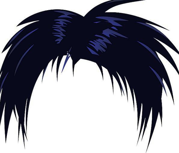 Hair Mane Black Dark Wig Toupee Cosplay Haircut Death Note L