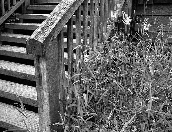 Stairs Staircases Slowly Black White Gradually Sta