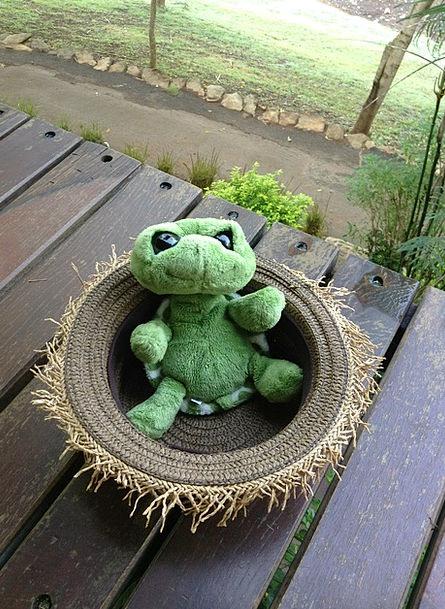 Turtle Toy Doll Cute Attractive Stuffed Plush Fur