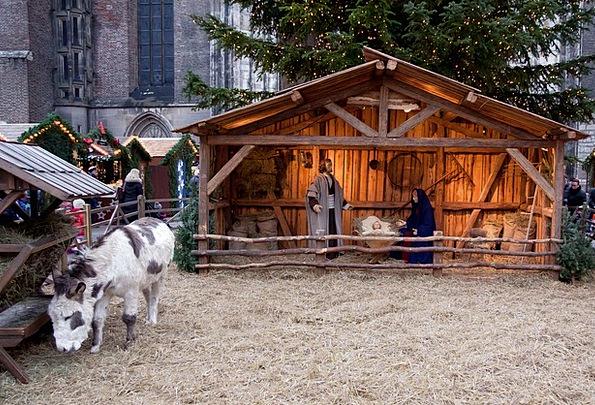 Christmas Market Stand Donkey Stall Christmas Deco