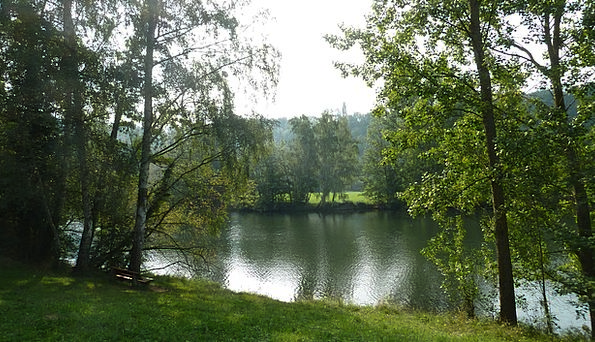 River Stream Landscapes Aquatic Nature Bank Set Wa