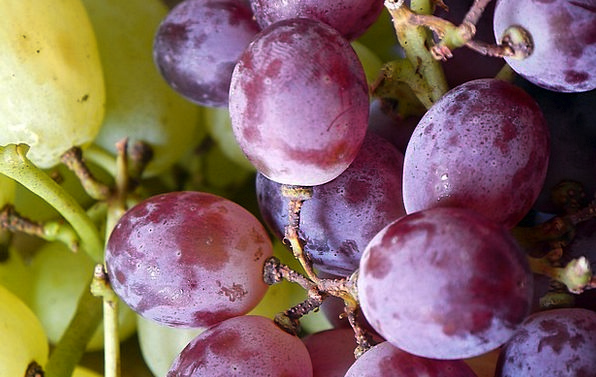 Grapes Drink Group Food Food Nourishment Bunch Agr