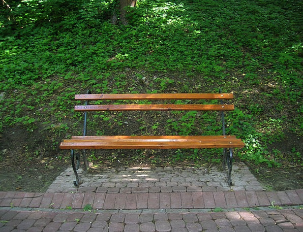 Bench Seat Landscapes Common Nature Nature Country