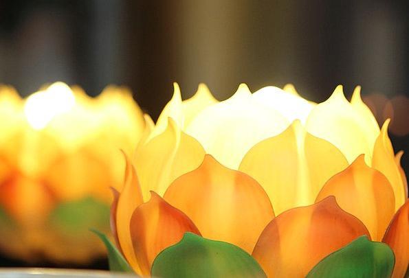 Lotus Lovely China Wind Beautiful