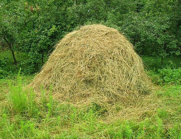 Hay Straw Landscapes Wrench Nature Village Communi
