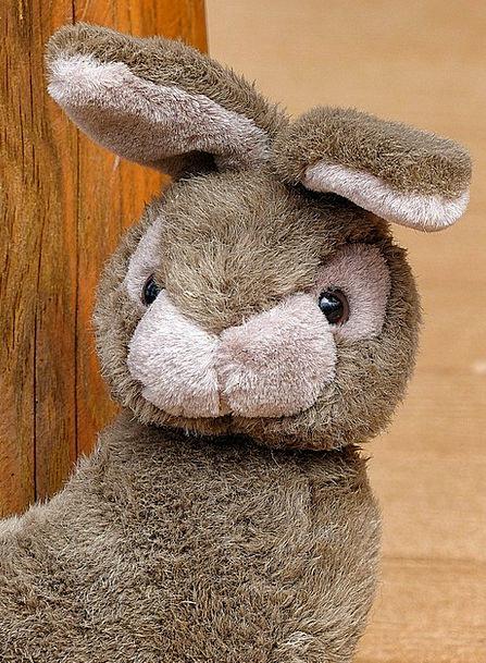 Fabric Cloth Rabbit Child'S Toy Bunny Adorable Gor
