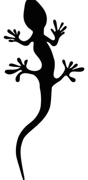 Lizard Salamander Reptile Free Vector Graphics Ski