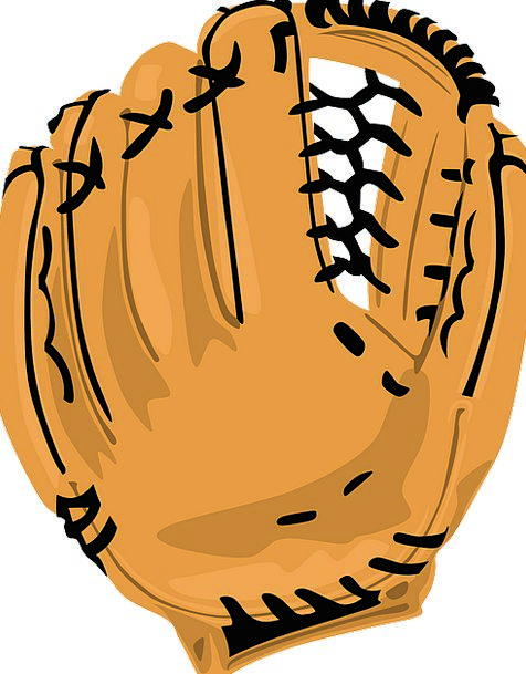 Baseball Mitt Hand Glove American Leather Skin Cat