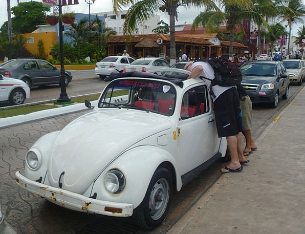 Auto Car Traffic Transportation Beetle Insect Vw V