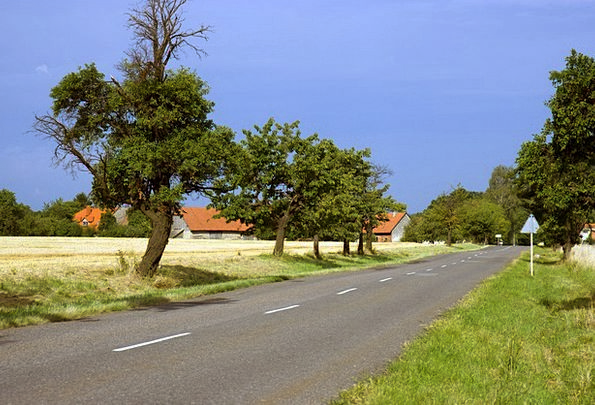 Rural Country Landscapes Nature Road Street Landsc
