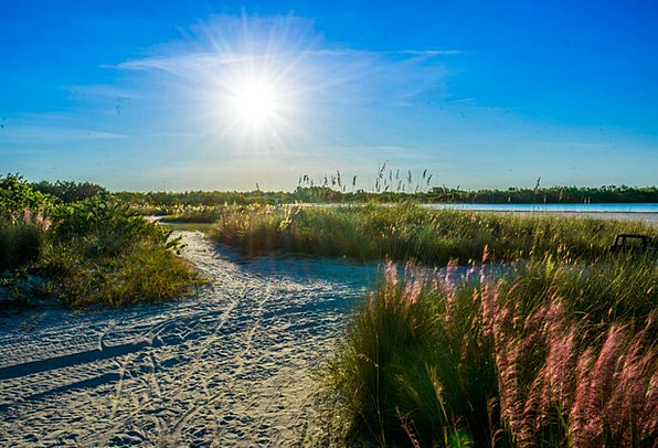 Tigertail Beach Landscapes Nature Sunstar Marco Is