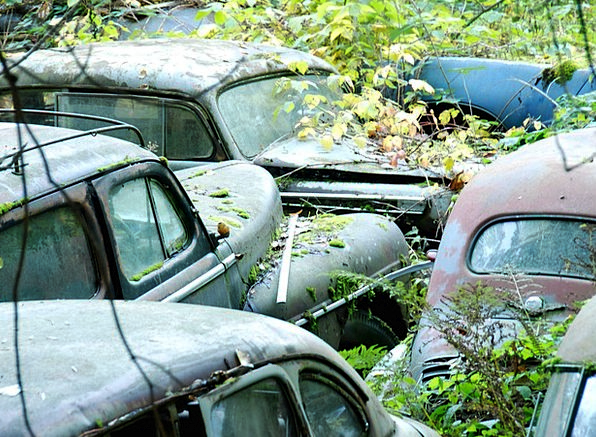 Car Cemetery Neglected Deserted Old Cars Scruffy M