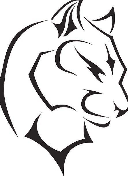 Panther Skull Wild Rough Head Wildcat Animal Physi