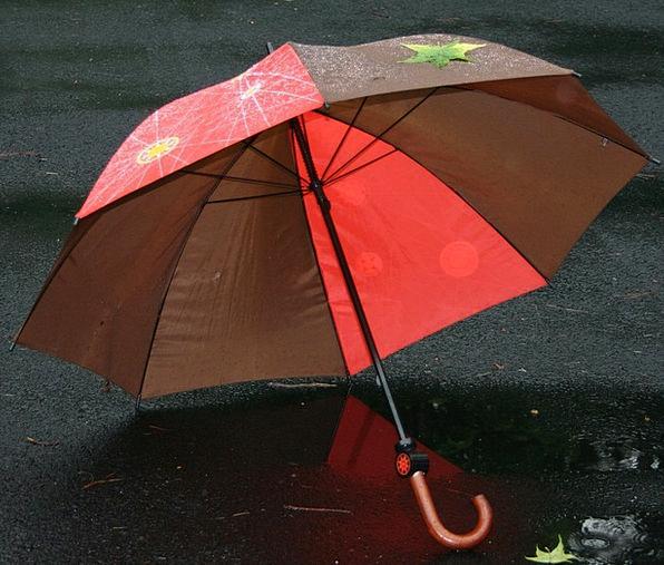 Umbrella Canopy Volley Protection Defense Rain Rai