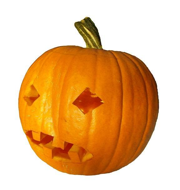 Pumpkin Harvest Crop Gourd Thanksgiving Blessing A