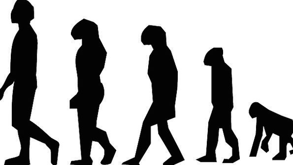 a development of charles darwin Introduction while charles darwin is famous throughout the world for the development of the theory of evolution and natural selection, few appreciate that he was.