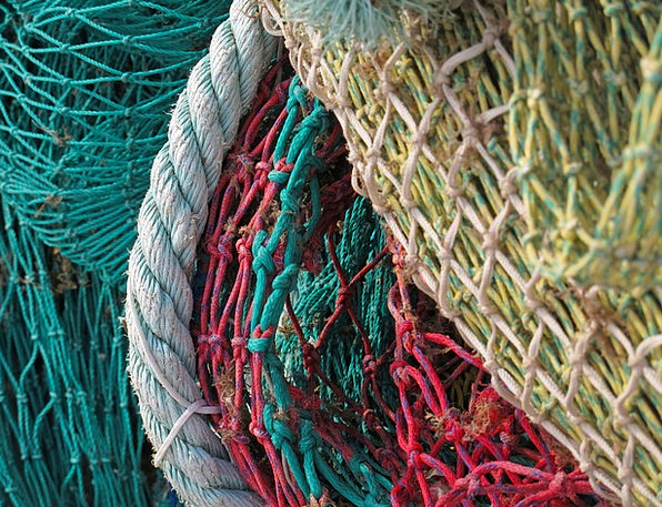 Fishing Net Net Fishing Angling Network