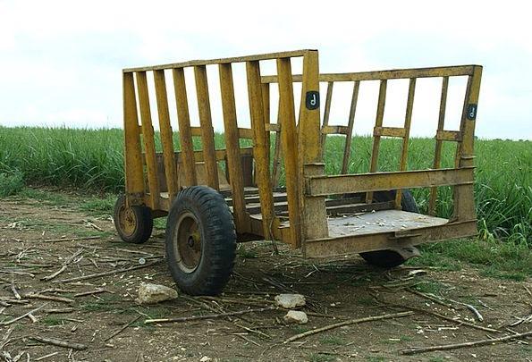 Dare Taunt Buggy Mature Established Stroller Sugar
