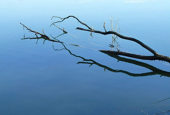 Reflection Likeness Landscapes Division Nature Wat
