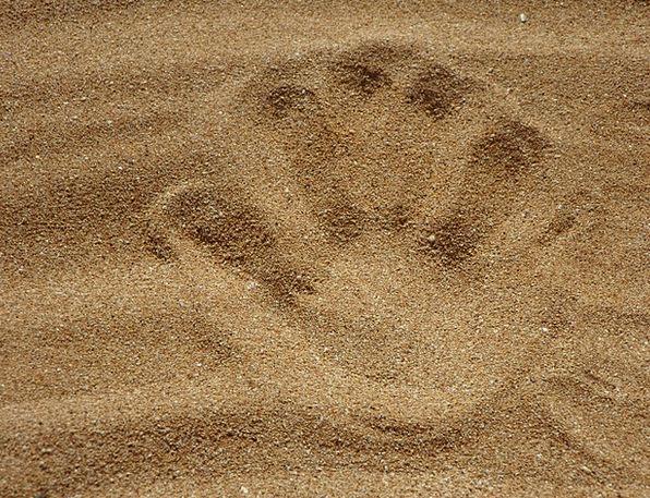 Sand Shingle Vacation Seashore Travel Reprint Reis