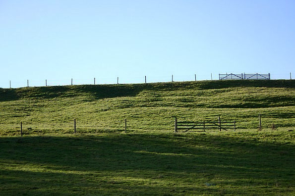 Coupling Link Landscapes Nature Meadow Field Pastu