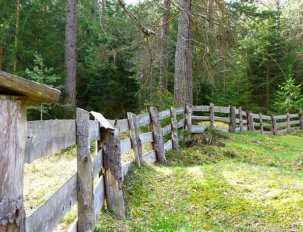 Fence Barrier Limit Boundary Plank Fence Wood Timb