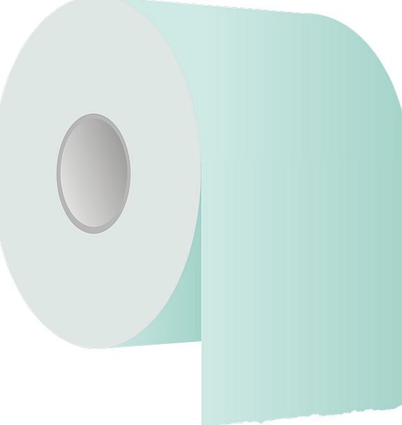 Toilet Newspaper Roll Reel Paper Sanitary Hygienic