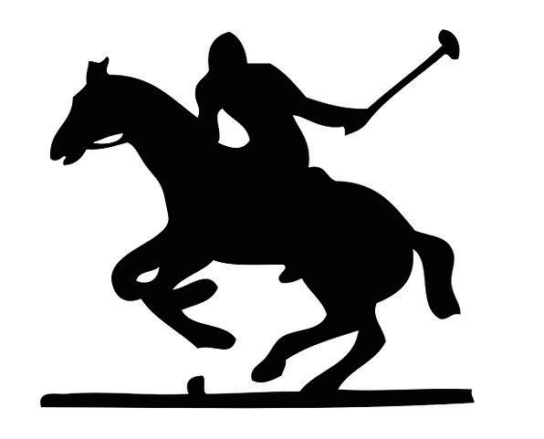 Horse Mount Pony Polo Jockey Rider Player Sport Ba