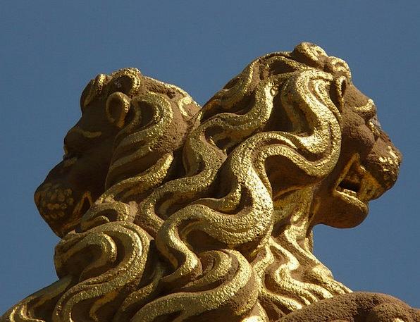 Lion Shock Gold Gilded Mane Fig