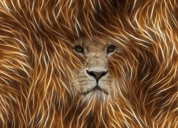 Lion Graphic Explicit Image Editing Animal World P