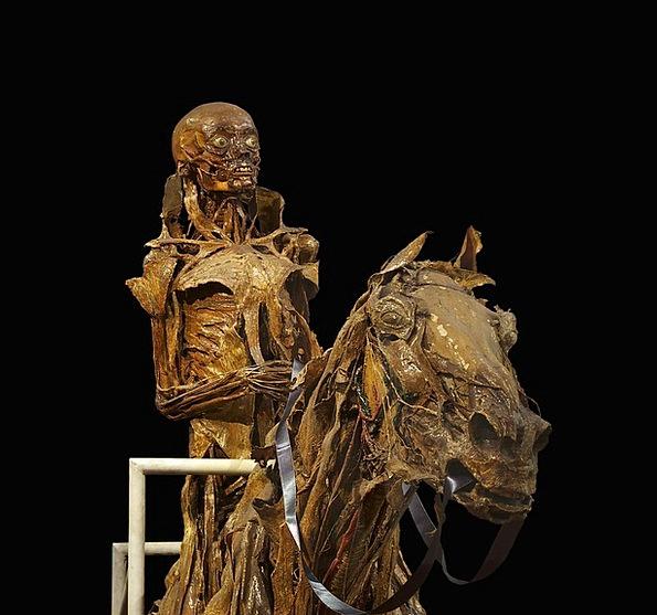 Mummification Medical Minimum Health Horse Mount S