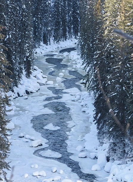 Creek Stream Landscapes Ice-covered Nature Ice Fro
