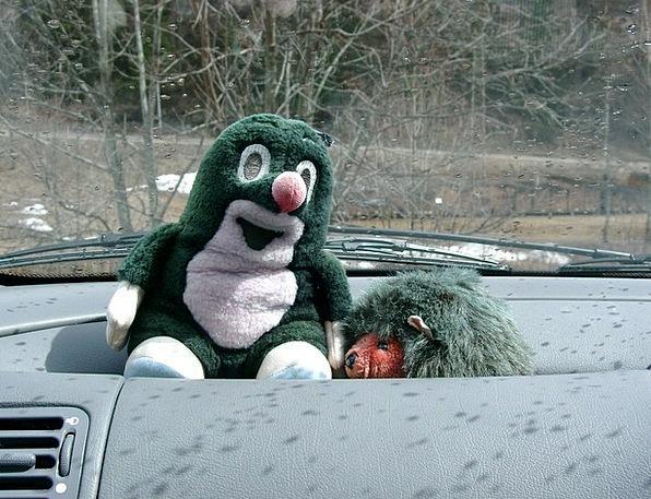 Hedgehog Spy Stuffed Animal Mole Funny Humorous Te