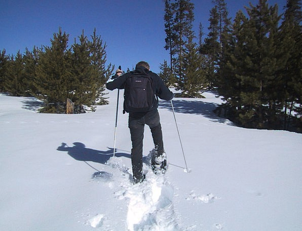 Snowshoeing Snow Snowflake Snow Shoes Hiking Mount